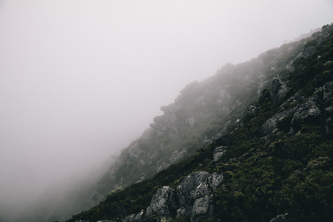 Tasmania 2014 18