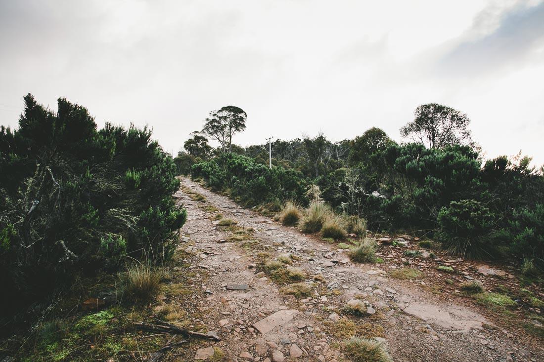 Tasmania 2014 15