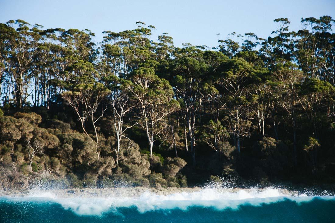 Tasmania 2014 9