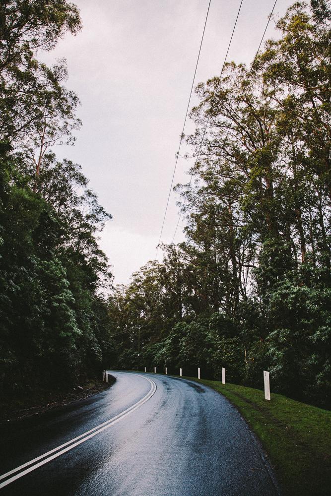 Tasmania 2014 4