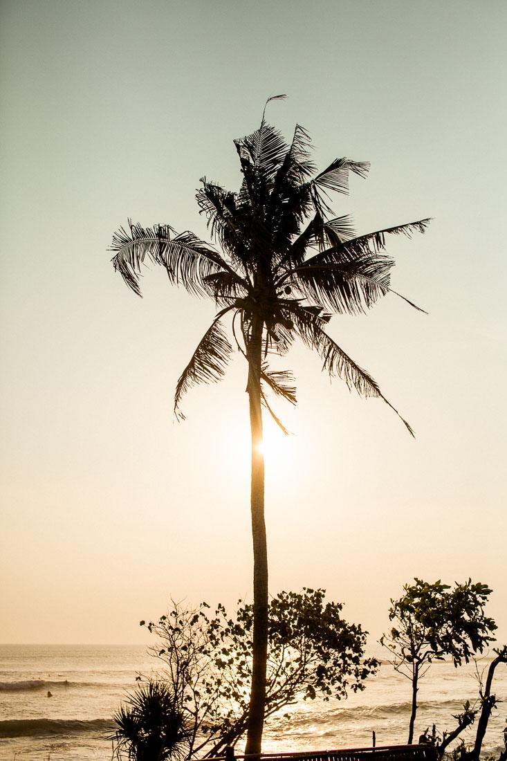 Bali 2014 44
