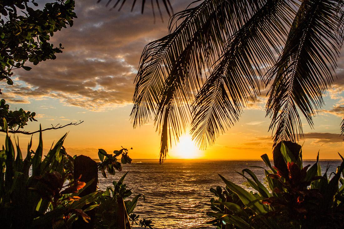 Namotu Island 2015 14