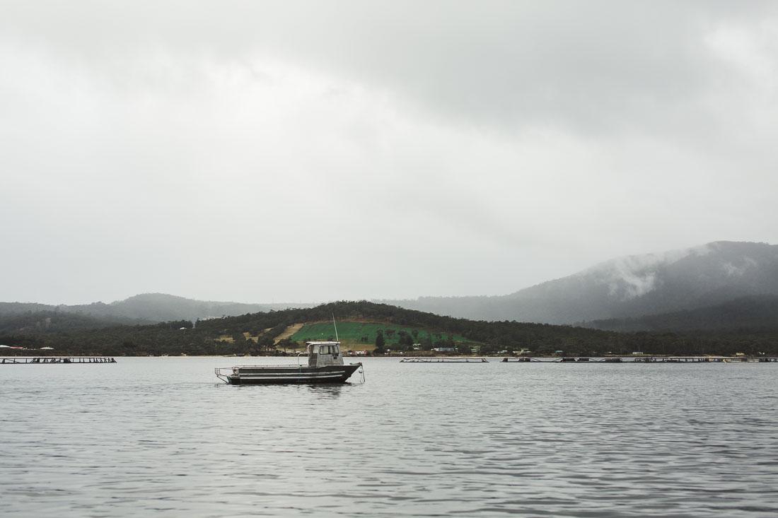 Satellite Island 10