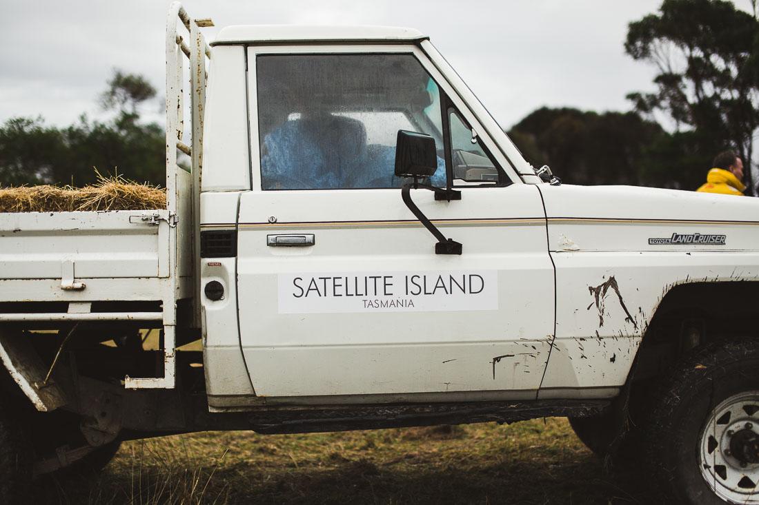 Satellite Island 41