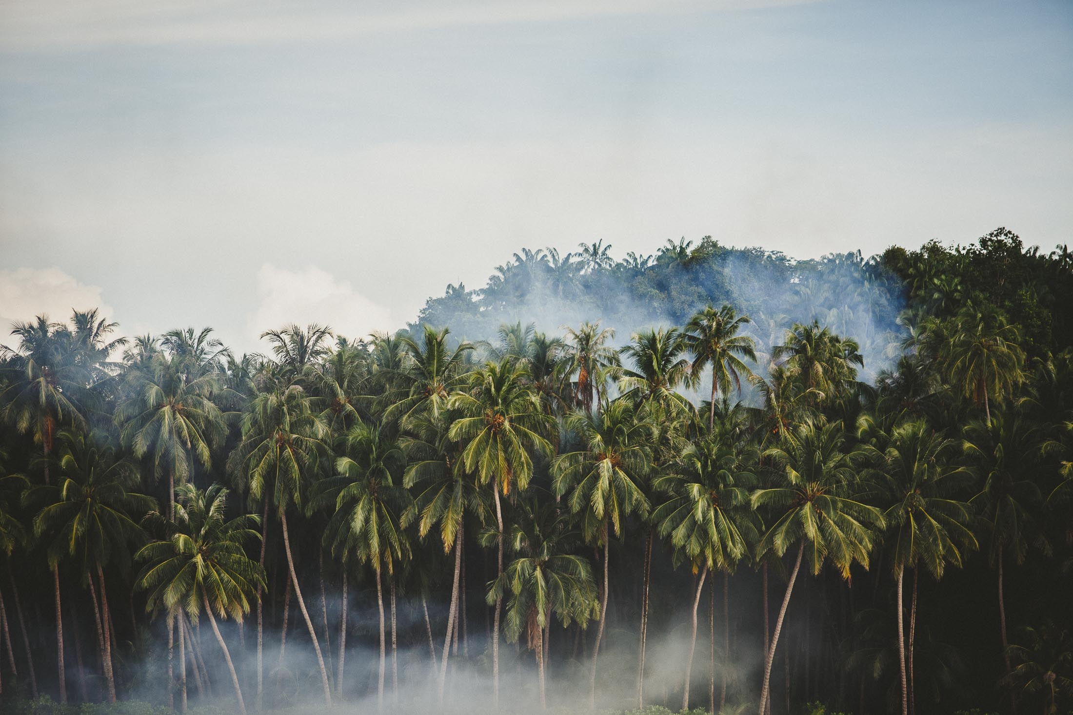 TELO ISLANDS 6