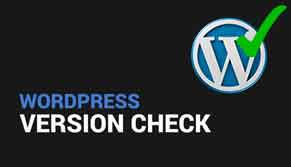 wordpress-version-check