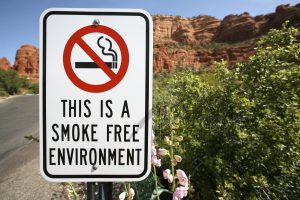 Smoke Free Environment Sign displayed in beautiful natural surroundings.