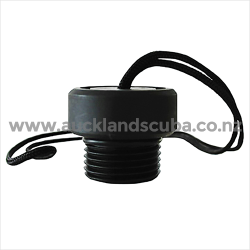 DIN Valve Protector