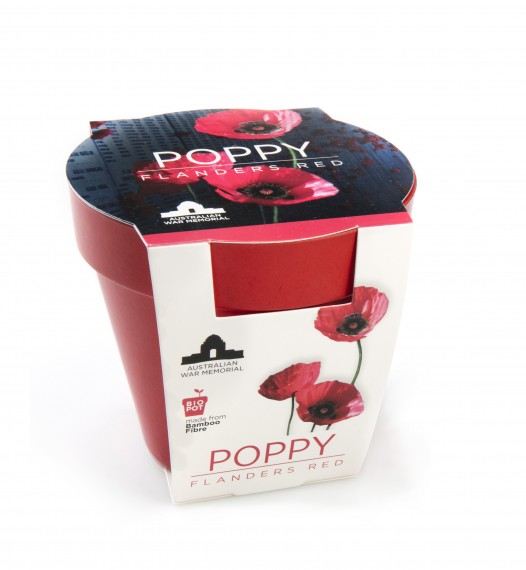 Grow-your-own seedling kit: Poppy, Flanders red