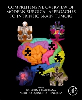 Comprehensive Overview of Modern Surgical Approaches to Intrinsic Brain Tumors