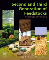 2nd and 3rd Generation of feedstocks: The evolution of biofuels