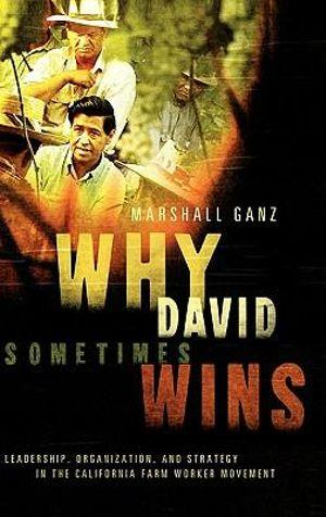 Why David Sometimes Wins: Leadership, Strategy and the Organization in the