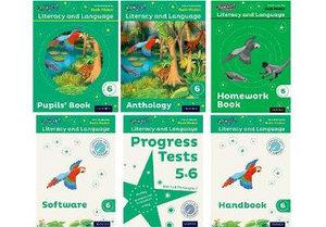 Read Write Inc Literacy and Language: Year 6 Easy Buy Pack