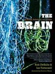 Brain: Big Bangs, Behaviors, and Beliefs
