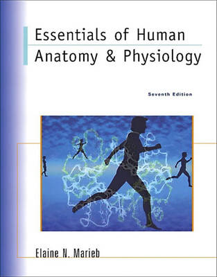 The Essentials of Human Anatomy and Physiology