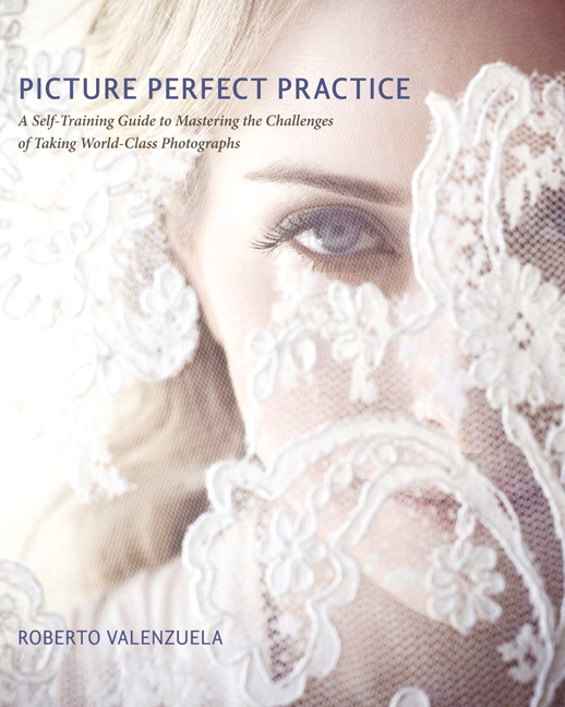 Picture Perfect Practice: A Self-Training Guide to Mastering the Challenges of Taking World-Class Photographs