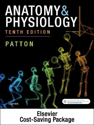 Anatomy & Physiology - Binder-Ready (includes A&P Online course)