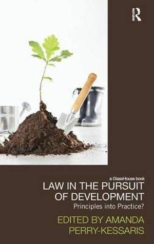 Law in the Pursuit of Development