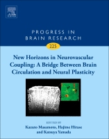 New Horizons in Neurovascular Coupling: A Bridge Between Brain Circulation and Neural Plasticity