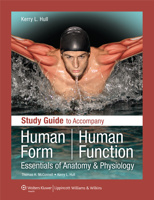 Study Guide To Accompany Human Form Human Function: Essentials Of Anatomy & Physiology