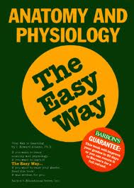 Anatomy and Physiology the Easy Way