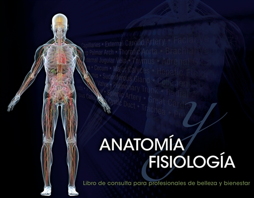 Spanish Translated Anatomy & Physiology Reference for Beauty and Wellness Professionals, Spiral Bound Version