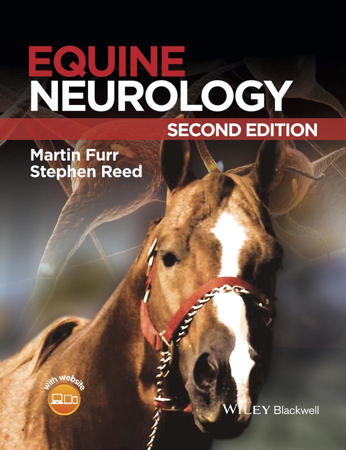 Equine Neurology