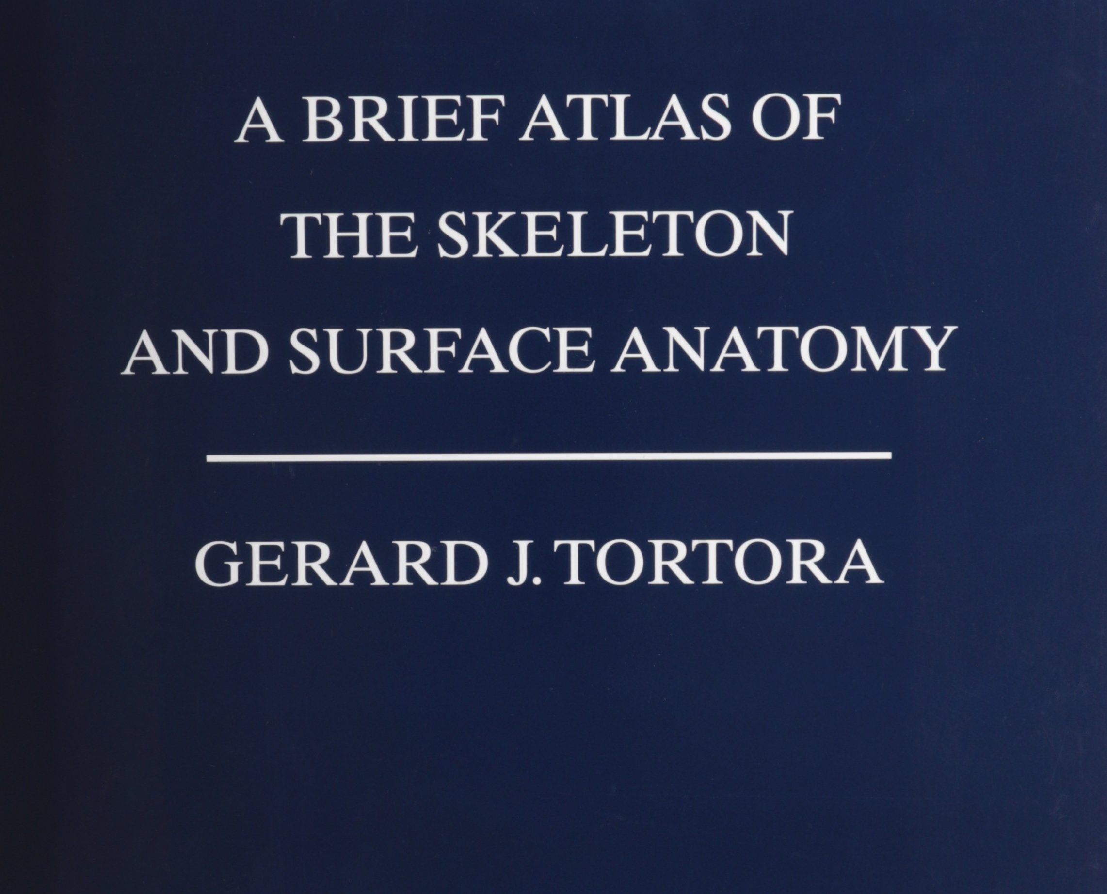 A Brief Atlas of the Skeleton and Surface Anatomy