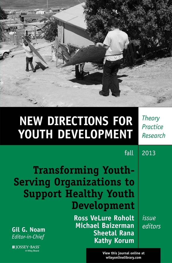 Transforming Youth Serving Organizations to Support Healthy Youth Development