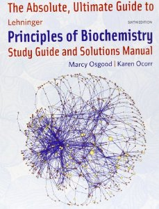 The Absolute, Ultimate Guide to Lehninger Principles of Biochemistry: Study Guide and Solutions Manual