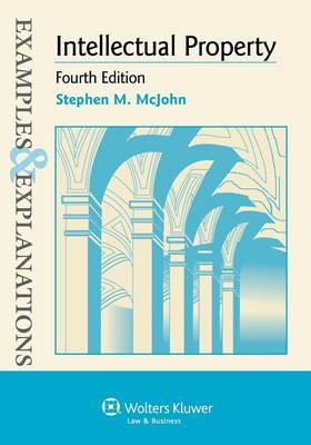 Intellectual Property: Examples & Explanations, 4th Edition
