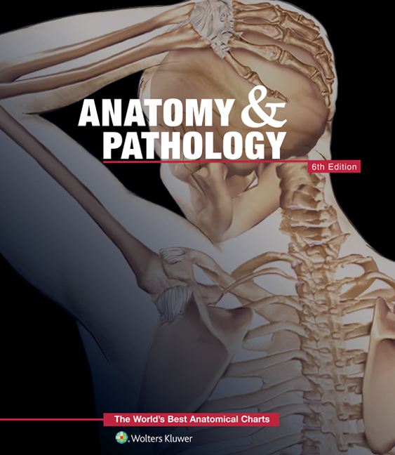 Anatomy & Pathology: The World's Best Anatomical Charts
