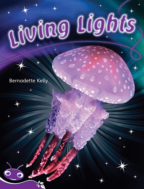 Bug Club Level 19 - Purple: Living Lights (Reading Level 19/F&P Level K)
