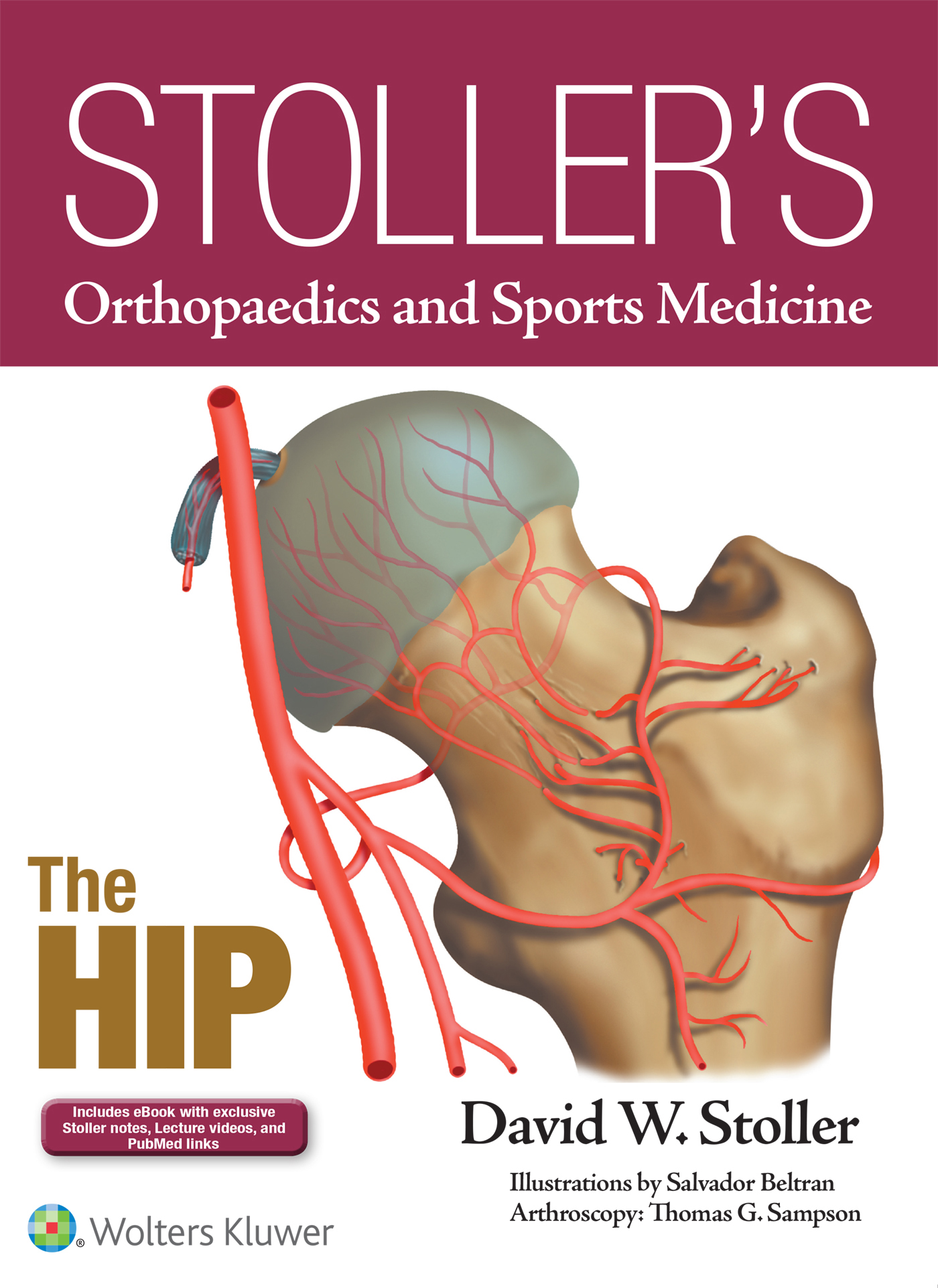 Stoller's Orthopaedics and Sports Medicine: The Hip (Enhanced Edition ePrint + eBook bundle)