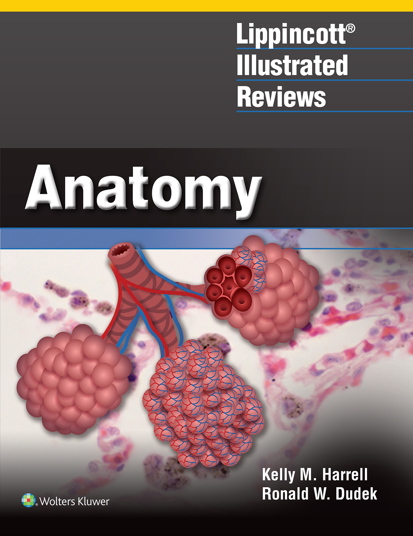 Lippincott Illustrated Review: Anatomy