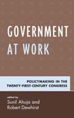 Government at Work: Policymaking in the Twenty-First-Century Congress