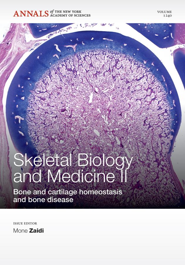 Skeletal Biology and Medicine II