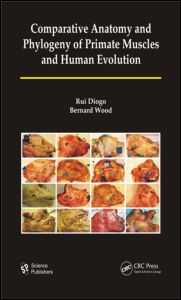 Comparative Anatomy and Phylogeny of Primate Muscles and Human Evolution