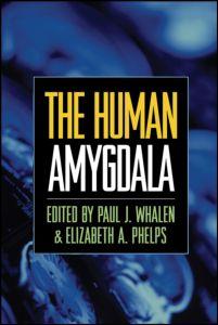 Human Amygdala