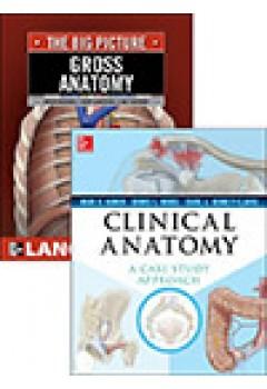 SW Clinical Anatomy Case Study Approach
