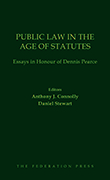 Public Law in the Age of Statutes