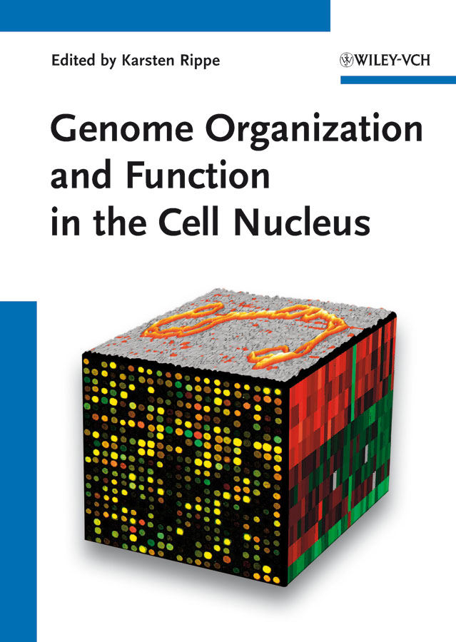 Genome Organization And Function In The Cell Nucleus