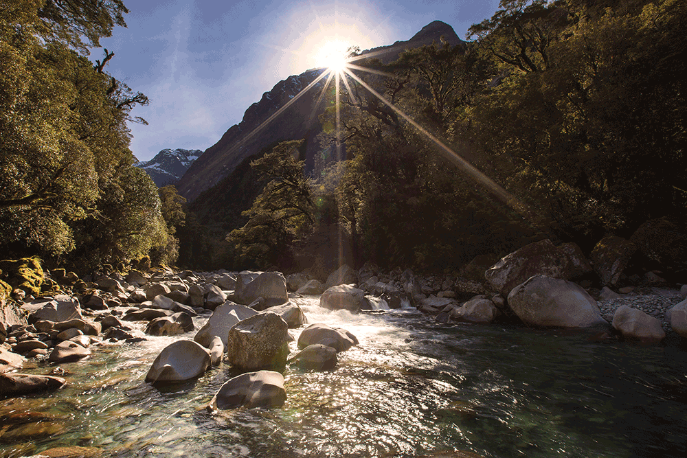 Tutoko River, Fiordland National Park. Shot in bright conditions, I stopped the aperture down to f20 for this exposure, for maximal depth of field and to make a 'starburst' as the sun broke over the horizon. Again, composed around the rule of thirds, with approximately two-thirds of the scene bush and one-third river. Although the sun captures your attention in this shot, I put the cluster of boulders on the lower left third to make them an anchor for the scene. 5DMKII with 16-35mm lens. 1/125 @ f20 and 100 ISO