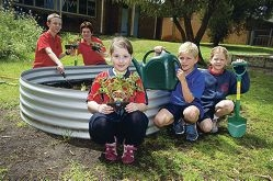 Brendan Power, Kalani Small, Kiera Lindsay, Tyler Logan and Elisabeth Gillard are some of the students who are taking part in a gardening program at North Woodvale Primary School. d408429