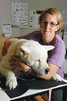 Vet Janine Hanks with healthy dog Jordan. Picture: Jon Hewson