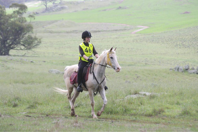 Sally Anne Mills riding Wongamine in the 40km event last year.