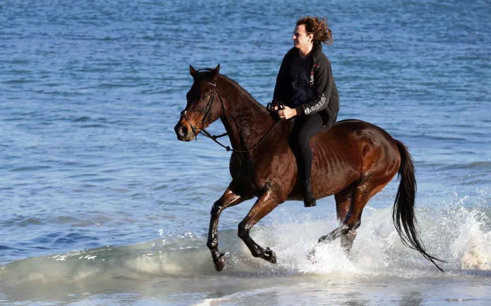 Blake Weller with Blitz at Hillarys Horse Beach. Picture: Martin Kennealey.