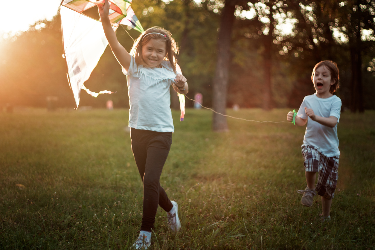Kite Flying Festival in Eden Hill this Sunday