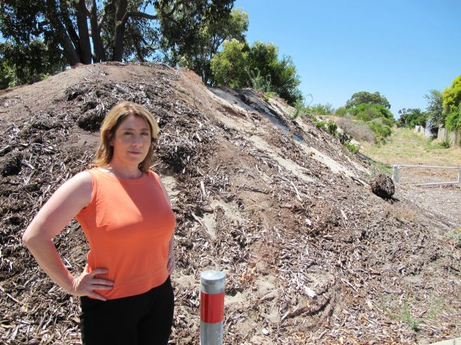 MLA Rita Saffioti says the sand bund behind her will be replaced with a noise wall if Labor is elected.