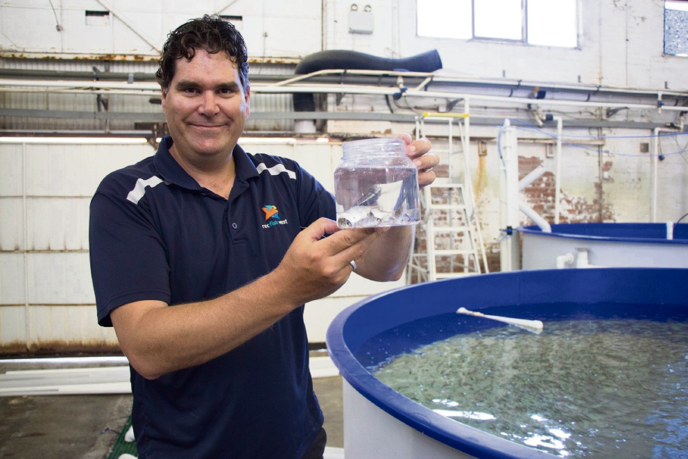 Recfishwest chief executive Dr Andrew Rowland with juvenile snapper raised in captivity.